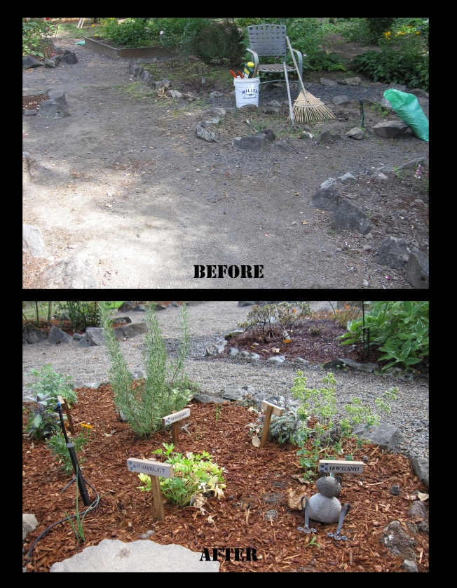 Garden before after