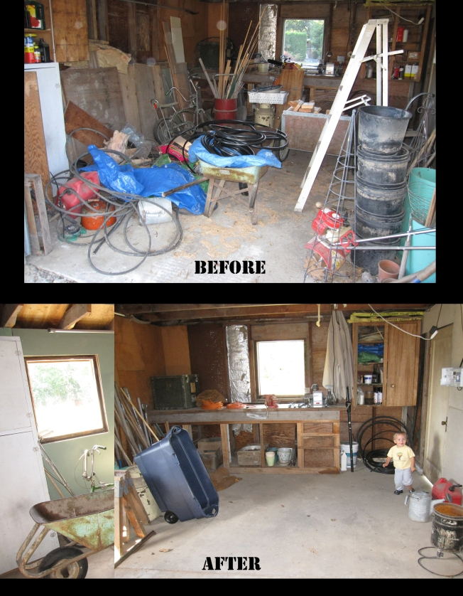 Inside Shed before after